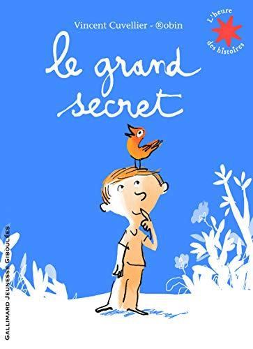 9782070633579: Le grand secret (French Edition)