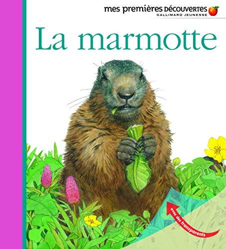 9782070635047: La marmotte (Mes premières découvertes, nouvelle présentation)