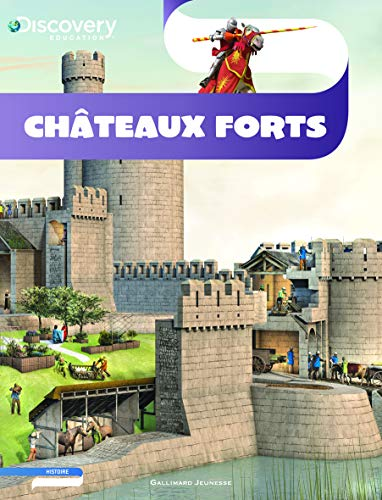 9782070641468: Châteaux forts