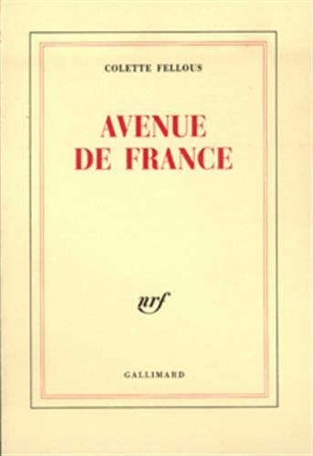 9782070760183: Avenue de France (French Edition)