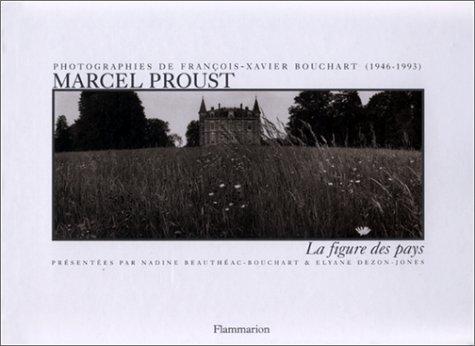 9782080129710: Marcel Proust : La Figure des pays