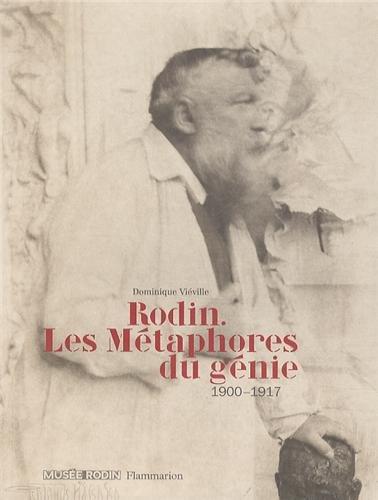 RODIN, LES MÉTAPHORES DU GÉNIE 1900-1917: VIEVILLE DOMINIQUE