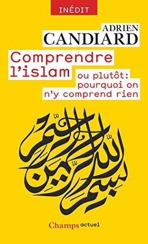 9782081386587: Comprendre l'Islam - ou plutôt : pourquoi on n'y comprend rien
