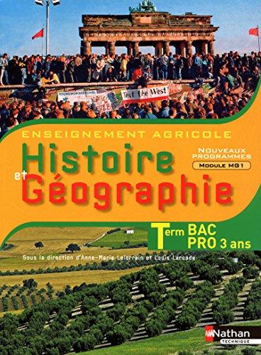 Histoire et geographie Tle Bac Pro 3 ans (French Edition): Anne-Marie Lelorrain