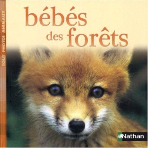 9782092019955: Bébés des forêts