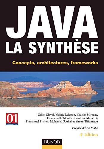 9782100071029: Java : La synthèse