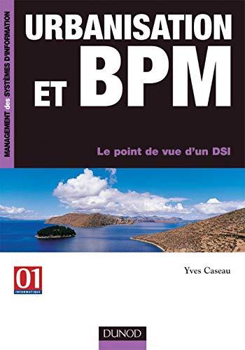 9782100487240: Urbanisation et BPM : Le point de vue d'un DSI