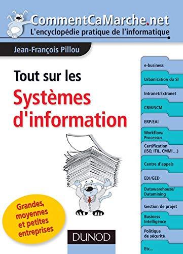 9782100502769: Tout sur les Systèmes d'information (French Edition)
