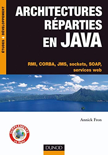 9782100511419: Architectures reparties en Java (French Edition)