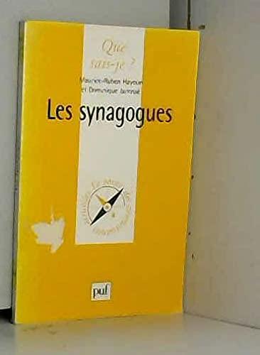 9782130495840: Les synagogues