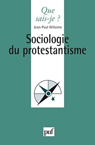 9782130539063: Sociologie du protestantisme