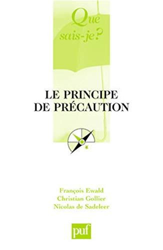 9782130566298: Le principe de précaution