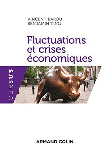 9782200611521: fluctuations et crises économiques