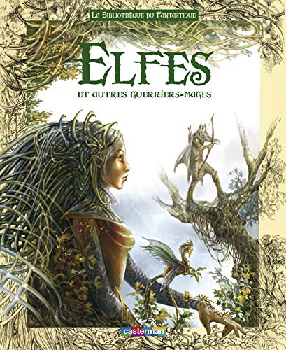 9782203002166: Bibliotheque du fantastique - elfes (French Edition)