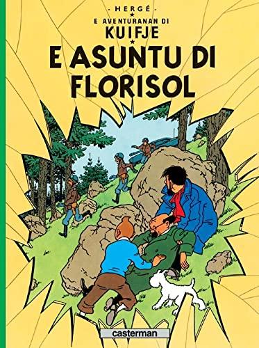 9782203008885: E Asuntu di Florisol (French Edition)