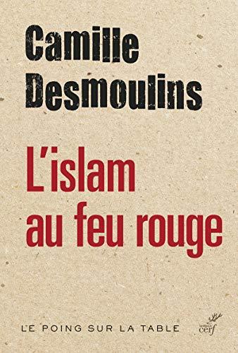 9782204106146: La civilisation au carrefour : l'islam au feu rouge