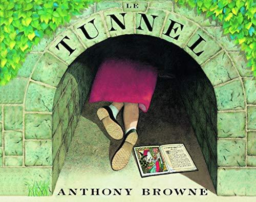 9782211018043: Le Tunnel