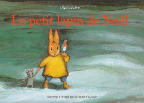 9782211041294: Le petit lapin de Noël (Album)