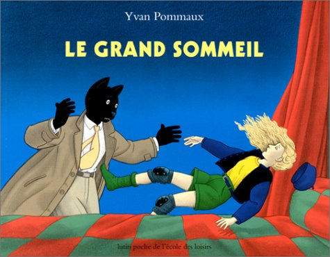 9782211056243: Le Grand Sommeil (French Edition)