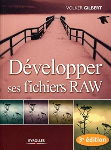 9782212122831: Développer ses fichiers RAW
