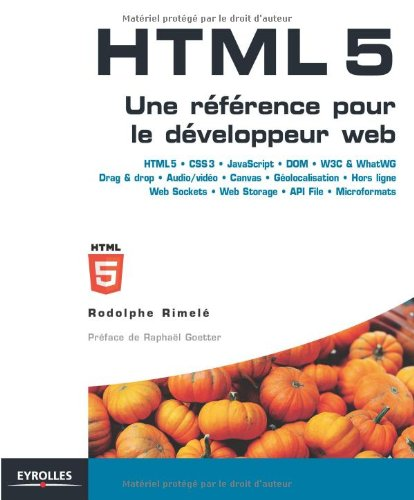 9782212129823: HTML 5 (French Edition)