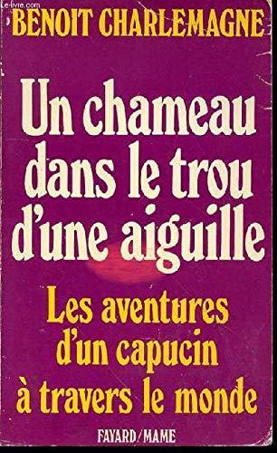9782213008943: Un chameau dans le trou d'une aiguille (French Edition)