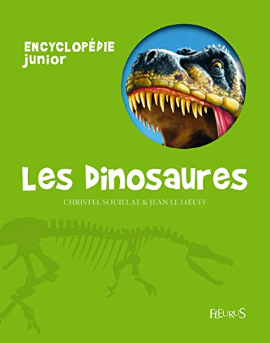 9782215055815: Les dinosaures (French Edition)