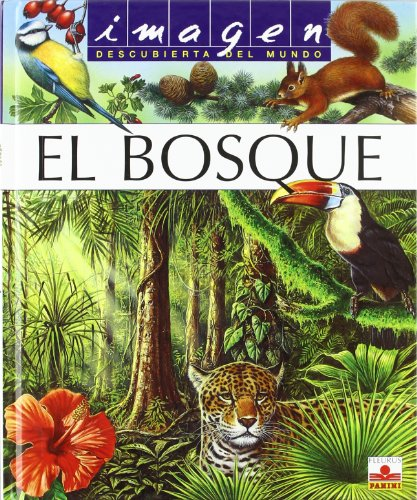 9782215081425: El bosque / the Forest (Imagen Descubierta Del Mundo) (Spanish Edition)