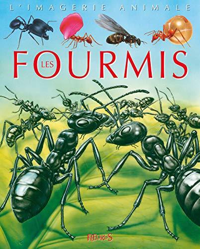 Fourmis - Imagerie Animale (French Edition) - Boccador, Sabine