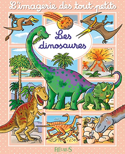 9782215106470: Les dinosaures (French Edition)