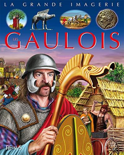 9782215115182: La Grande Imagerie Fleurus: Les Gaulois (French Edition)