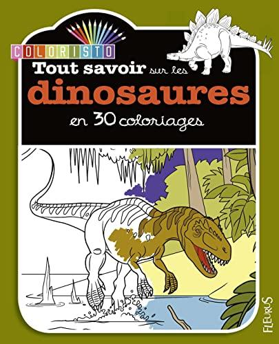 9782215156246: Tout Savoir Sur les Dinosaures en 30 Coloriages
