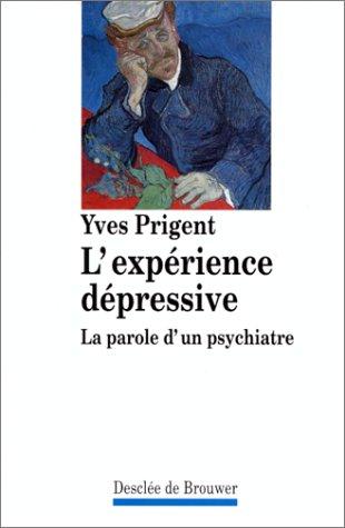 9782220034560: L'expérience dépressive