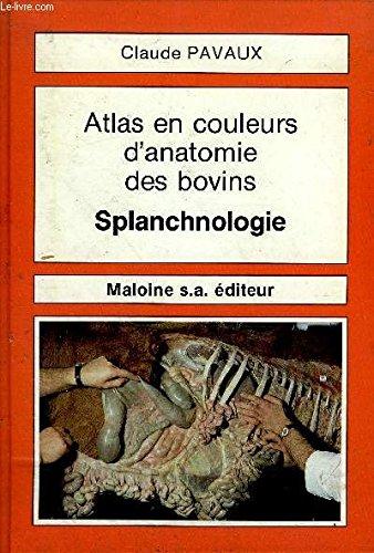 9782224007584: Atlas en couleurs d'anatomie des bovins: Splanchnologie (French Edition)