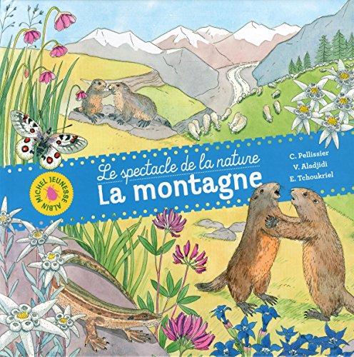 9782226318596: La Montagne