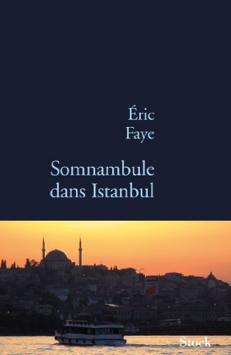 SOMNAMBULE DANS ISTANBUL: FAYE �RIC