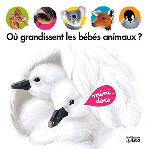 9782244363011: Où grandissent les bébés animaux ?