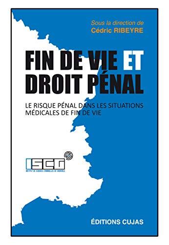 9782254144075: Fin de vie et droit pénal : Le risque pénal dans les situations médicales de fin de vie