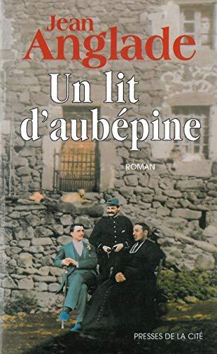 9782258039568: Un lit d'aubepine: Roman (French Edition)