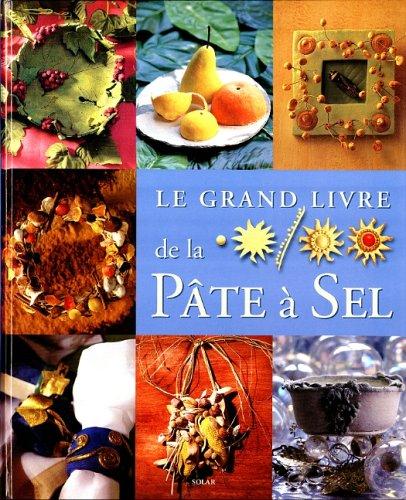 9782263028540: Le grand livre de la pâte à sel