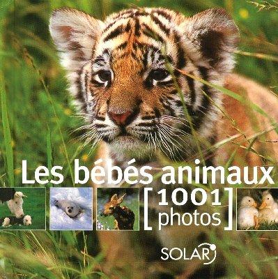 9782263041211: BEBES ANIMAUX EN 1001 PHOTOS