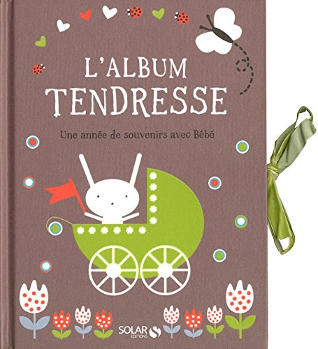 9782263053740: L'album tendresse (French Edition)