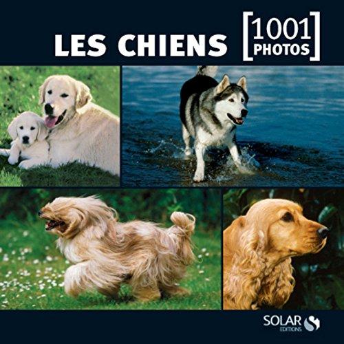 9782263055638: les chiens