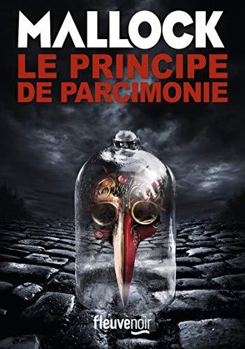 9782265114456: Principe de parcimonie(Le)