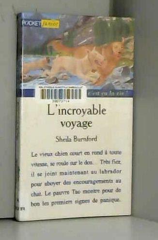 L incroyable voyage -pocket junior-: Pocket