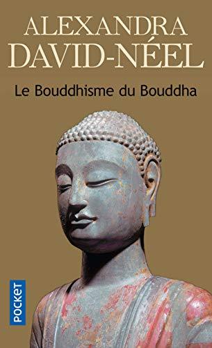 9782266142564: Le bouddhisme du Bouddha (Pocket)