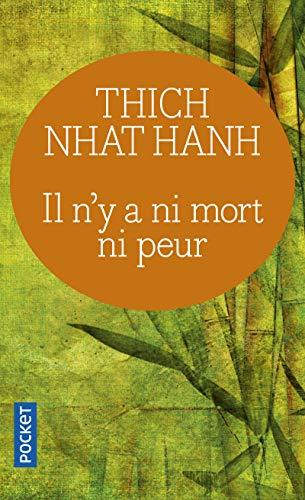 9782266149105: Il n'y a ni mort ni peur (French Edition)