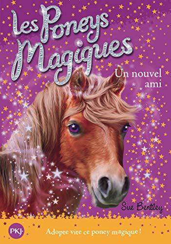 les poneys magiques t.1 ; un nouvel: Bentley Sue