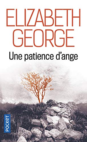 9782266206693: Une Patience D'Ange (French Edition)