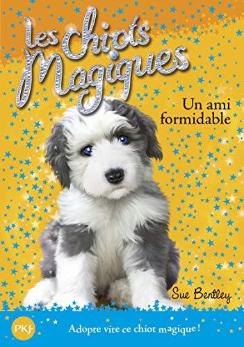 Chiots Magiques N08 Un Ami for (Magic: Bentley, Sue
